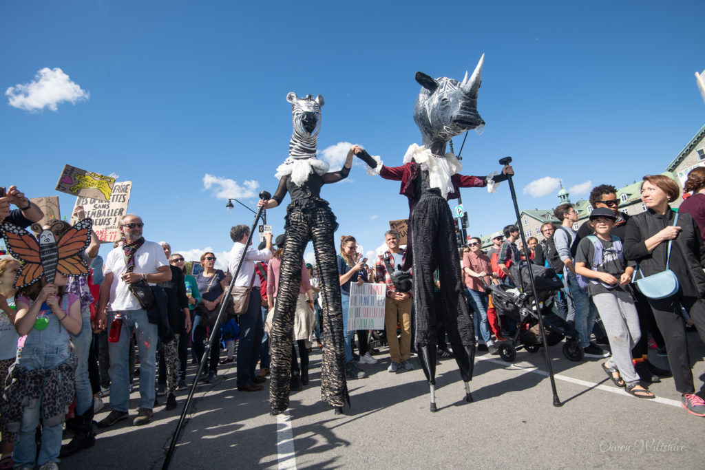 Stilt walkers getting noticed at the MTL Climate March