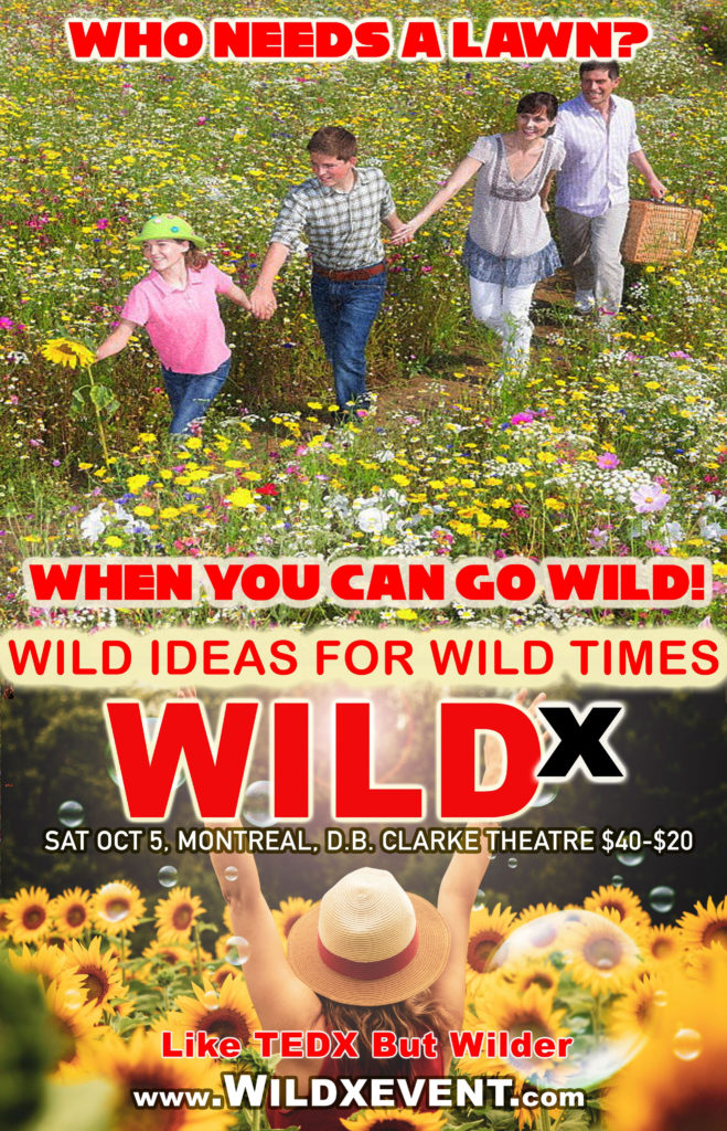 WildX event, wild ideas for climate change