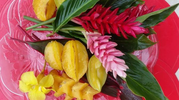 star fruit with red and pink flowers